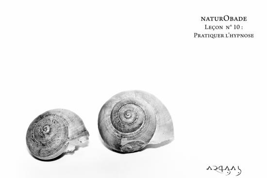 NaturObade L10