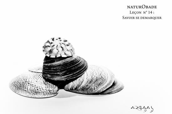 NaturObade L14