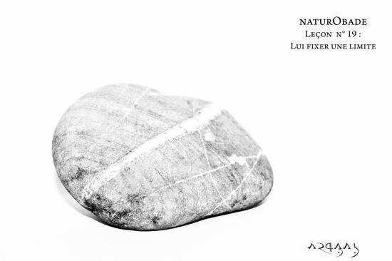 NaturObade L19