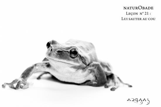 NaturObade L21