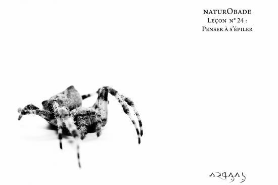 NaturObade L24