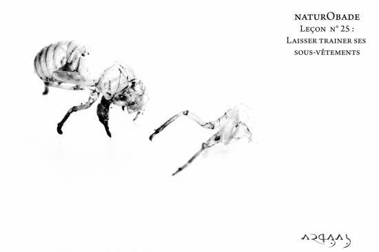 NaturObade L25