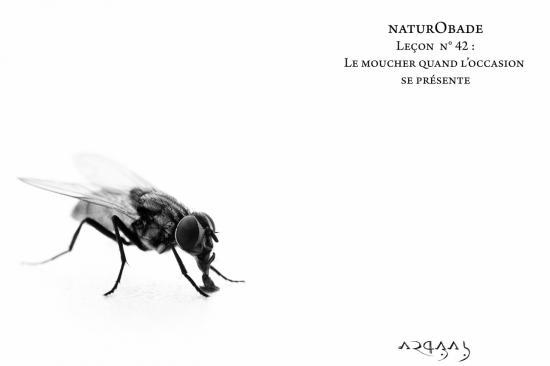 NaturObade L42