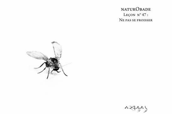 NaturObade L47