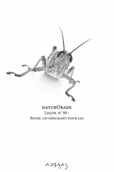 NaturObade L49