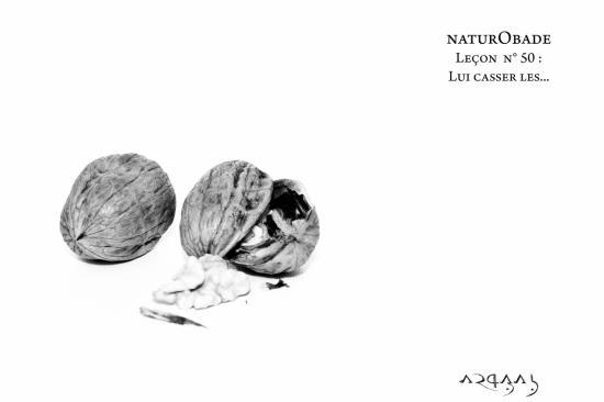 NaturObade L50