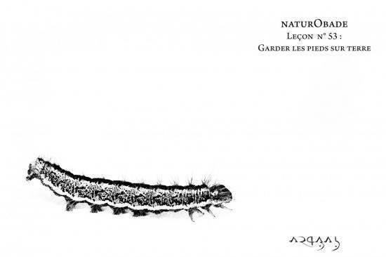 NaturObade L53
