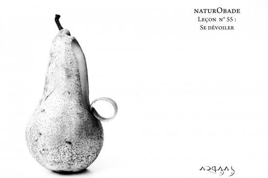 NaturObade L55