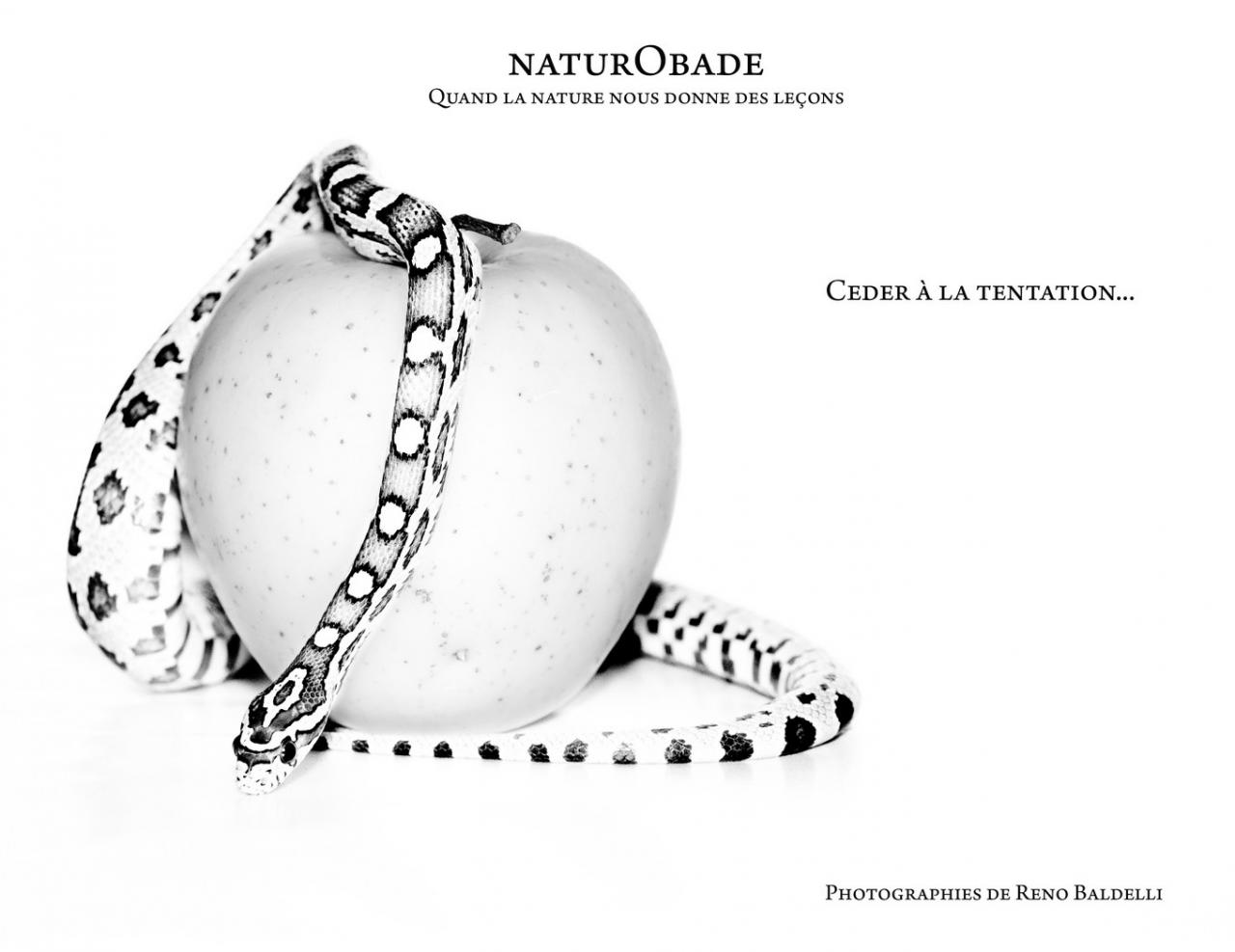 naturobade-couverture-finale-copier.jpg